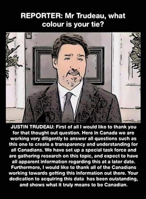What Colour Is Trudeau Tie